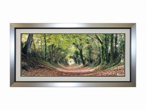 Autumn Walk Tree Landscape Rural Countryside Path Artwork W118 x H59