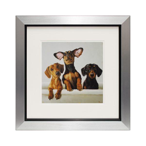 Triple Trouble Dog Dachshund Trio Framed Puppy Portrait Photograph W50 x H50