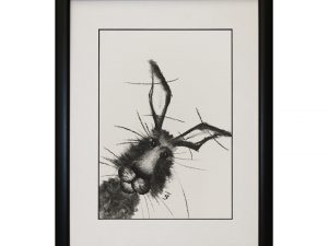 Christopher Framed Abstract Hare Rabbit Bunny W33 x H43