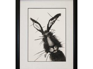 Jonny W33 x H43 Framed Abstract Rabbit Hare Bunny Artwork