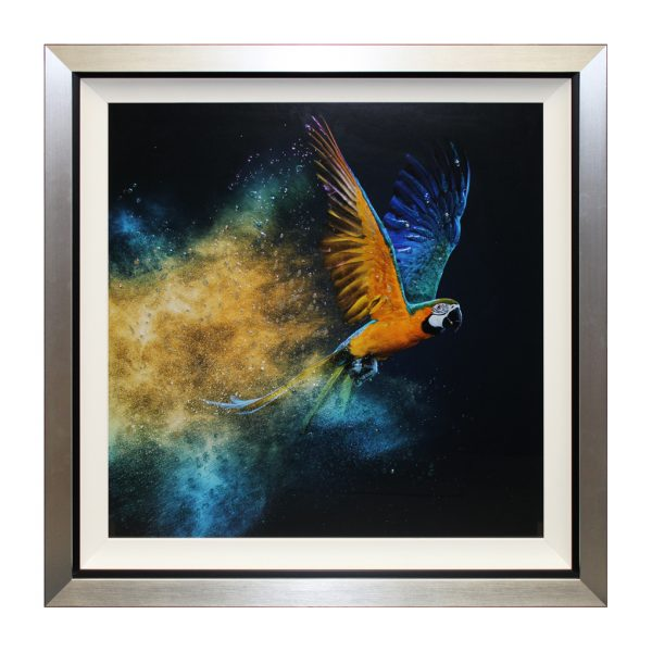 Rio Parrot Macaw Framed Liquid Art Artwork W87 x H87