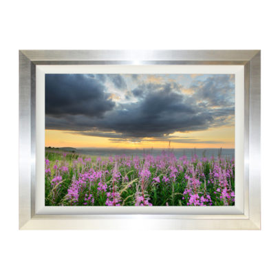 Evening Set - South Downs 114 x 84cm Dawn Dusk Sunrise Sunset Field of Flowers Framed Landscape Photograph