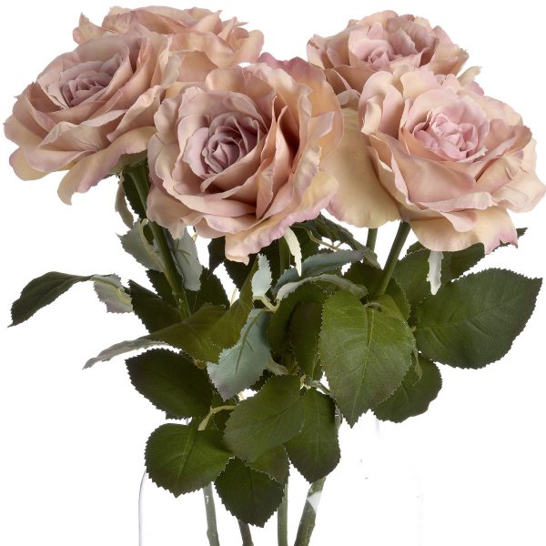 pink garden rose bunch