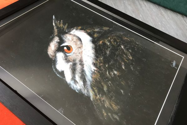 cassie williams framed art night owl detailed