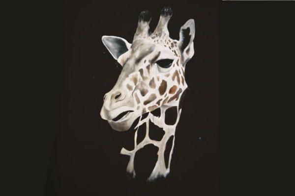cassie williams framed art tall tears detailed